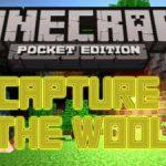 Capture the Wool — командные сражения